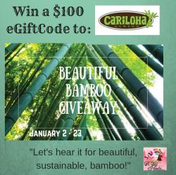 $100 EGift Card To Cariloha.com