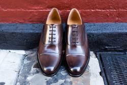 Paul Evans Cagney Cap-Toe Oxford In Chocolate