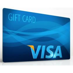 Are You Free Shopping With Visa This Fall?