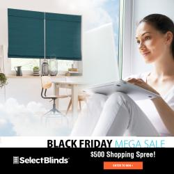 Credit To SelectBlinds For Window Treatments