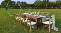Free Chiavari Chairs/Tiffany Chairs For Wedding